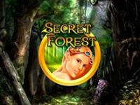На рабочем зеркале играть в Secret Forest