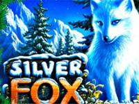 Silver Fox на доступном зеркале