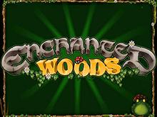 Азартная игра онлайн Enchanted Woods с бонусами