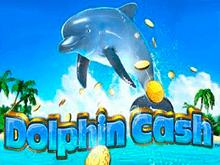 Деньги Дельфина